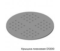 Крышка ливневая D1200 в колодец D1000
